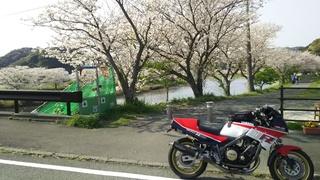 DSC_4190.JPG