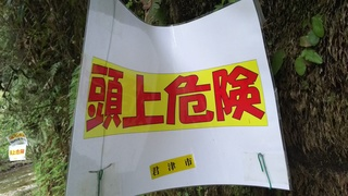 DSC_4290.JPG