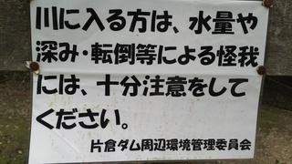 DSC_4293.JPG