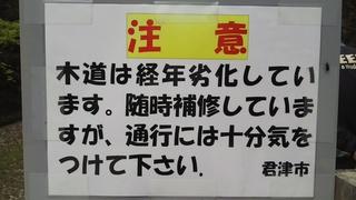 DSC_4294.JPG