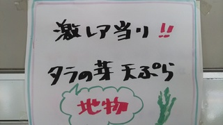 DSC_4507.JPG
