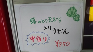 DSC_4508.JPG