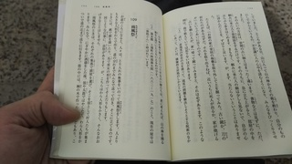 DSC_5007.JPG