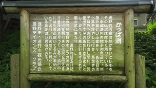 DSC_5047.JPG
