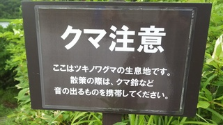 DSC_5294.JPG