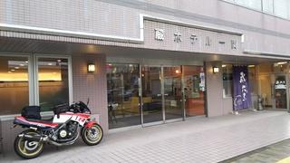 DSC_5353.JPG