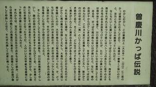 DSC_5421.JPG